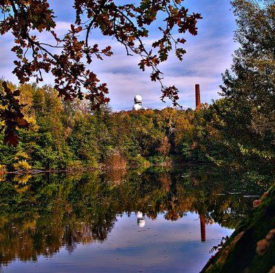 Spaziergang im Herbst im Grunewald. Berlin.